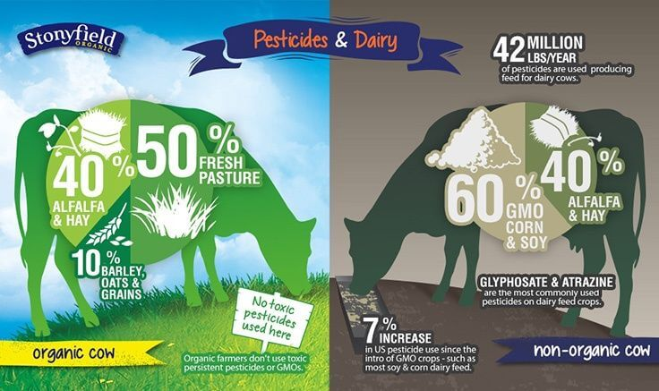 Pesticides & Dairy - Organic vs. Conventional Dairy Farming practices