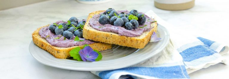 Blueberry Yogurt Cheese Toast Recipe | Stonyfield