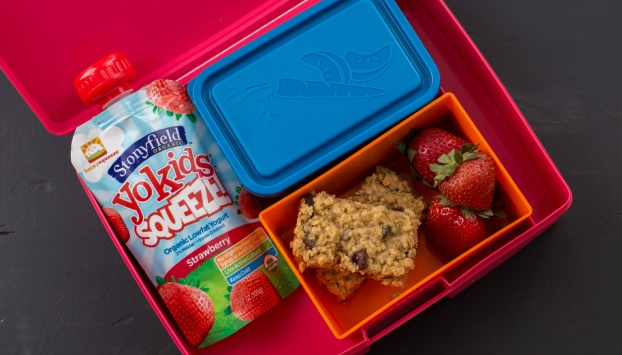 5 Tips for a Healthy Lunch Kids Will Love