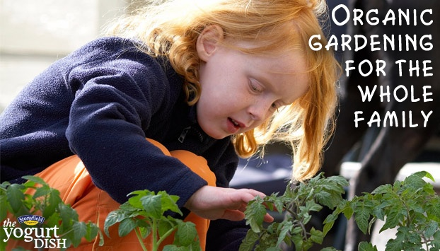 See how to get your family involved in organic gardening here