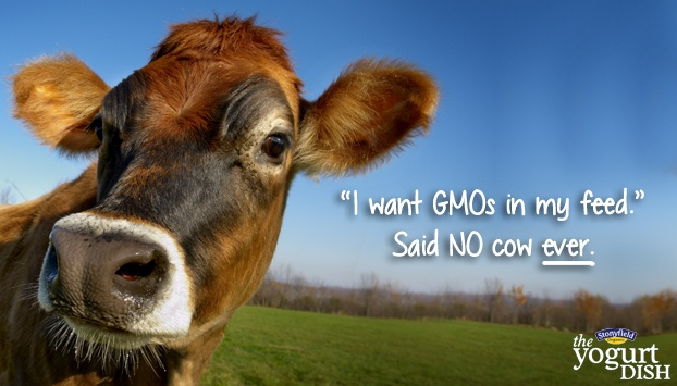Say no to GMOs!