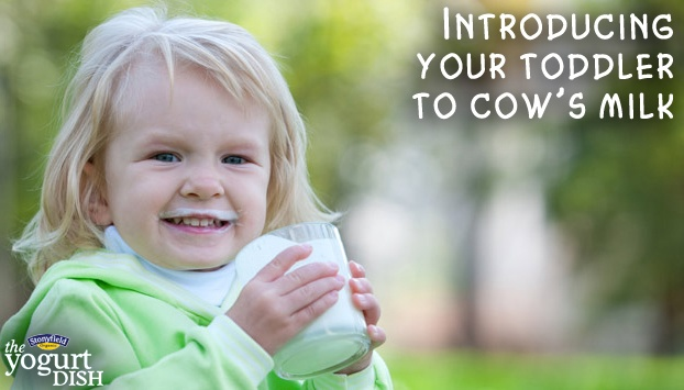 Toddler's love organic milk!