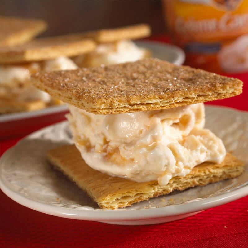 Frozen Yogurt Graham Cracker Sandwiches | Stonyfield