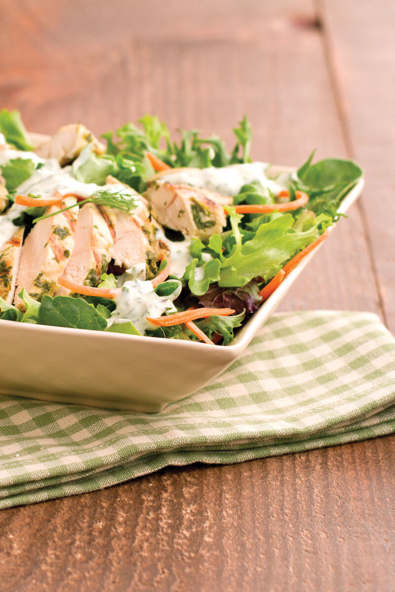 Grilled Chicken Salad with Chimichurri Dressing | Stonyfield