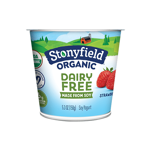 Dairy Free Strawberry